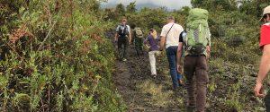 Virunga National Park Congo