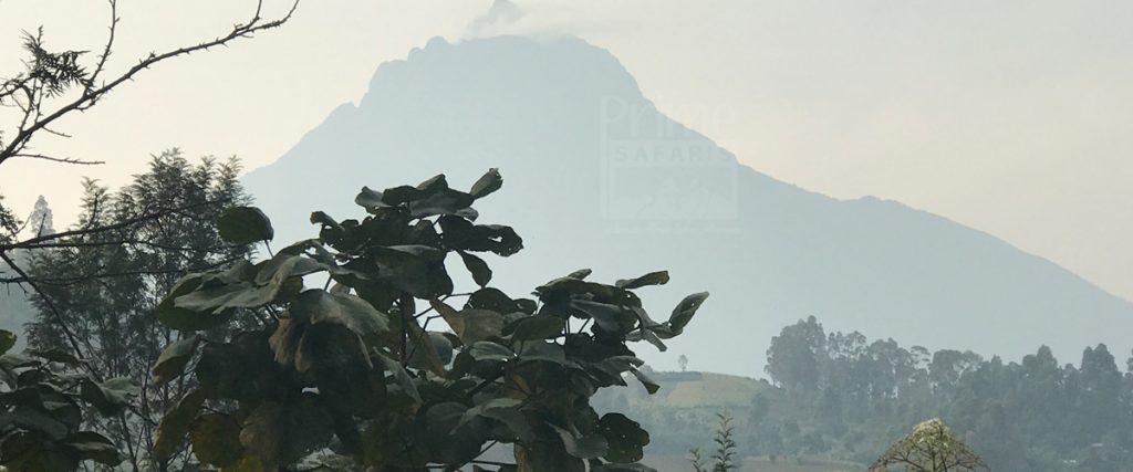 mountain mikeno in virunga national park