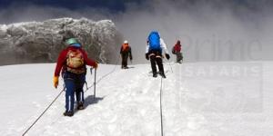 Rwenzori Mountain Trekking and Climbing