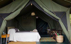Kibumba Camp Congo